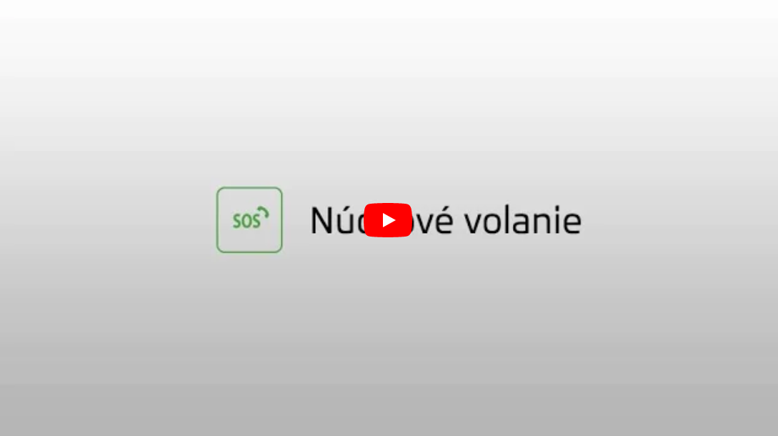 skoda connect video3